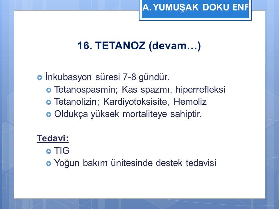 16. TETANOZ (devam…)  İnkubasyon süresi 7-8 gündür.  Tetanospasmin; Kas spazmı, hiperrefleksi  Tetanolizin; Kardiyotoksisite, Hemoliz  Oldukça yük