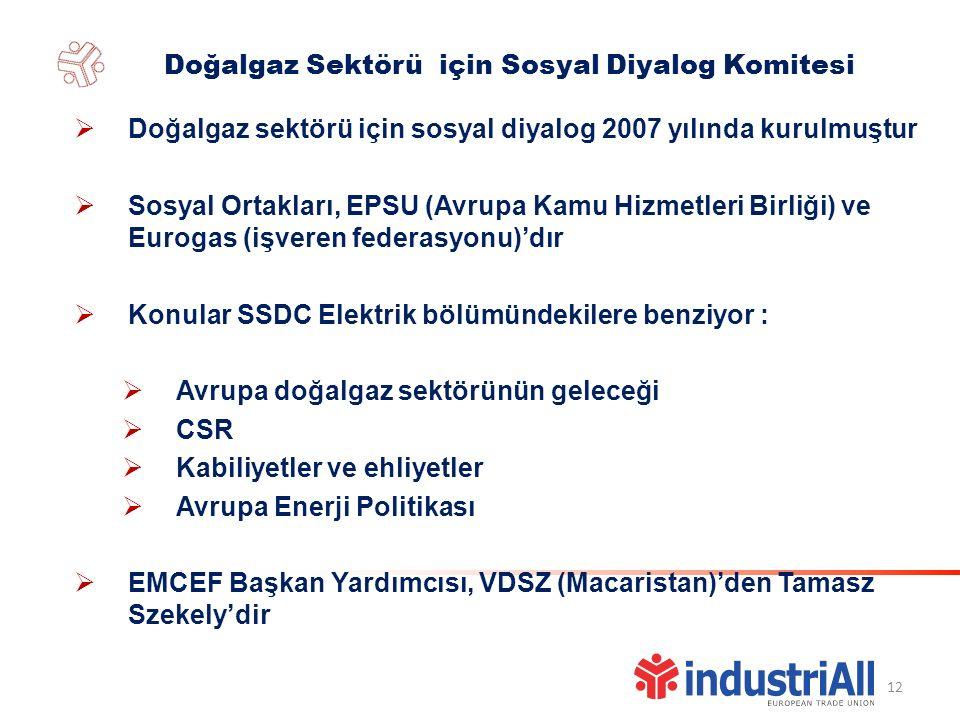 12  Doğalgaz sektörü için sosyal diyalog 2007 yılında kurulmuştur  Sosyal Ortakları, EPSU (Avrupa Kamu Hizmetleri Birliği) ve Eurogas (işveren federasyonu)'dır  Konular SSDC Elektrik bölümündekilere benziyor :  Avrupa doğalgaz sektörünün geleceği  CSR  Kabiliyetler ve ehliyetler  Avrupa Enerji Politikası  EMCEF Başkan Yardımcısı, VDSZ (Macaristan)'den Tamasz Szekely'dir Doğalgaz Sektörü için Sosyal Diyalog Komitesi