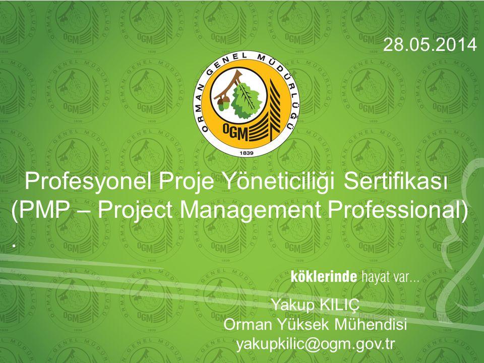 Profesyonel Proje Yöneticiliği Sertifikası (PMP – Project Management Professional).