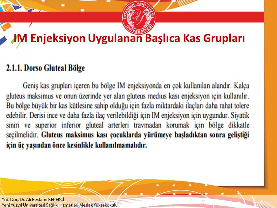 IM Enjeksiyon Uygulanan Başlıca Kas Grupları
