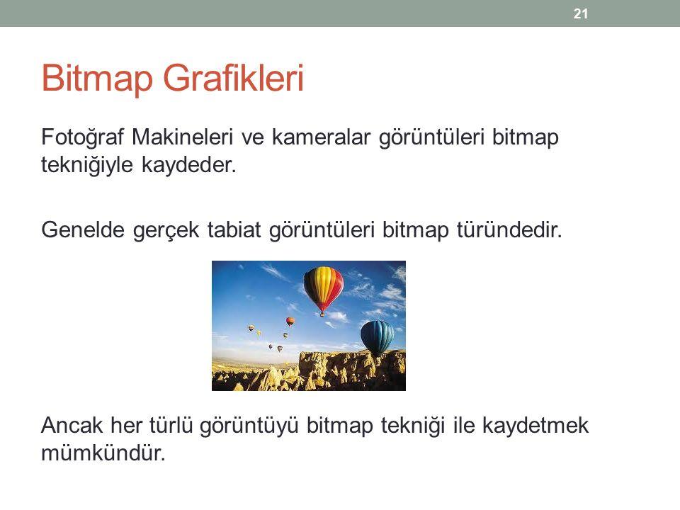Bitmap Grafikleri Fotoğraf Makineleri ve kameralar görüntüleri bitmap tekniğiyle kaydeder.