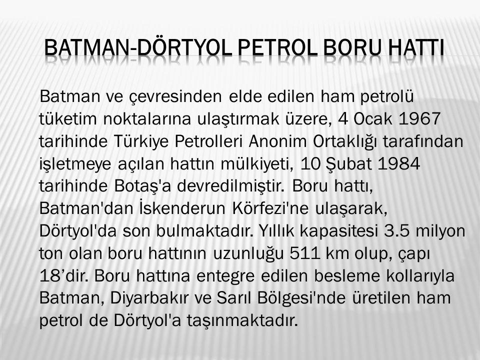 Batman ve çevresinden elde edilen ham petrolü tüketim noktalarına ulaştırmak üzere, 4 Ocak 1967 tarihinde Türkiye Petrolleri Anonim Ortaklığı tarafından işletmeye açılan hattın mülkiyeti, 10 Şubat 1984 tarihinde Botaş a devredilmiştir.