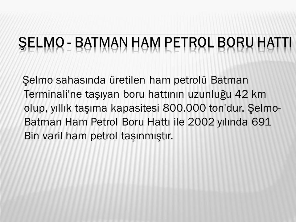 Şelmo sahasında üretilen ham petrolü Batman Terminali ne taşıyan boru hattının uzunluğu 42 km olup, yıllık taşıma kapasitesi 800.000 ton dur.
