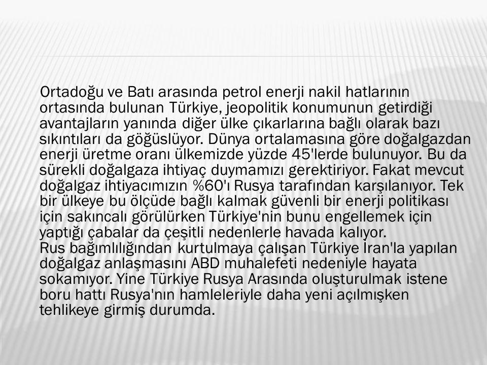 Ortadoğu ve Batı arasında petrol enerji nakil hatlarının ortasında bulunan Türkiye, jeopolitik konumunun getirdiği avantajların yanında diğer ülke çıkarlarına bağlı olarak bazı sıkıntıları da göğüslüyor.