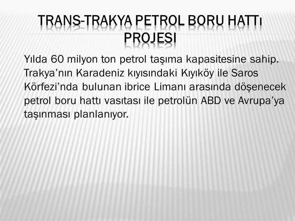 Yılda 60 milyon ton petrol taşıma kapasitesine sahip.