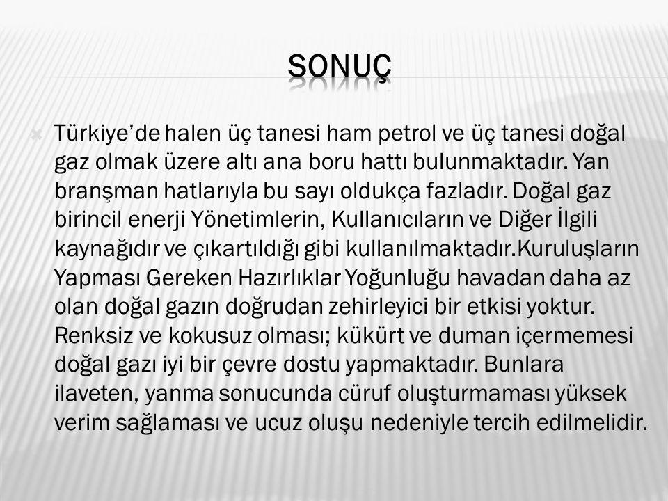  Türkiye'de halen üç tanesi ham petrol ve üç tanesi doğal gaz olmak üzere altı ana boru hattı bulunmaktadır.