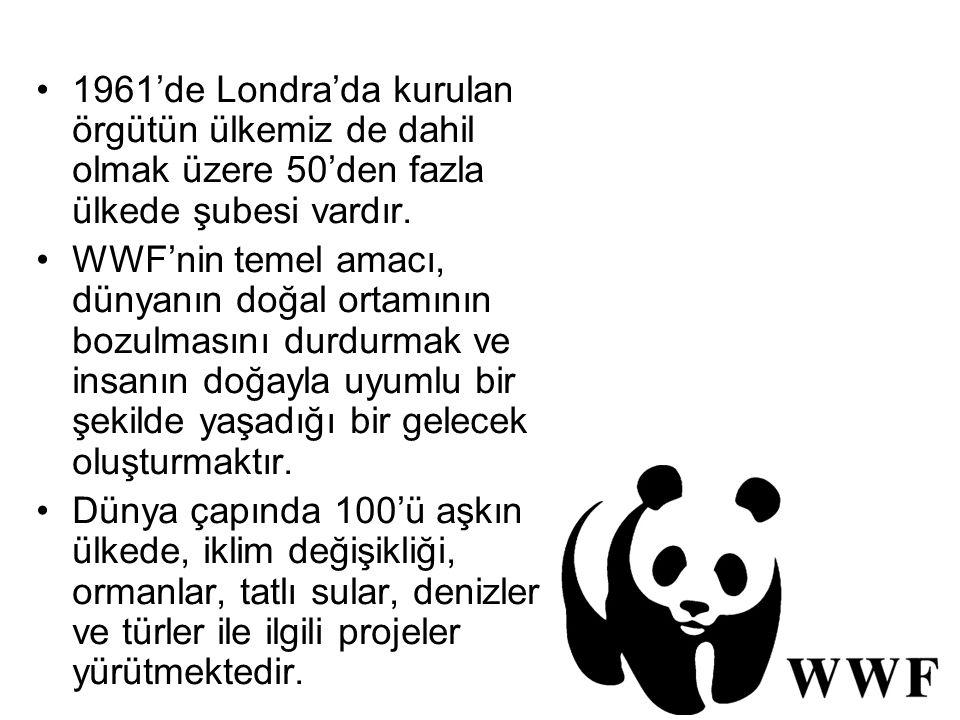 1961'de Londra'da kurulan örgütün ülkemiz de dahil olmak üzere 50'den fazla ülkede şubesi vardır. WWF'nin temel amacı, dünyanın doğal ortamının bozulm
