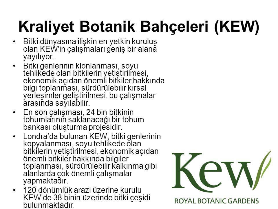 Kraliyet Botanik Bahçeleri (KEW) Bitki dünyasına ilişkin en yetkin kuruluş olan KEW'in çalışmaları geniş bir alana yayılıyor. Bitki genlerinin klonlan