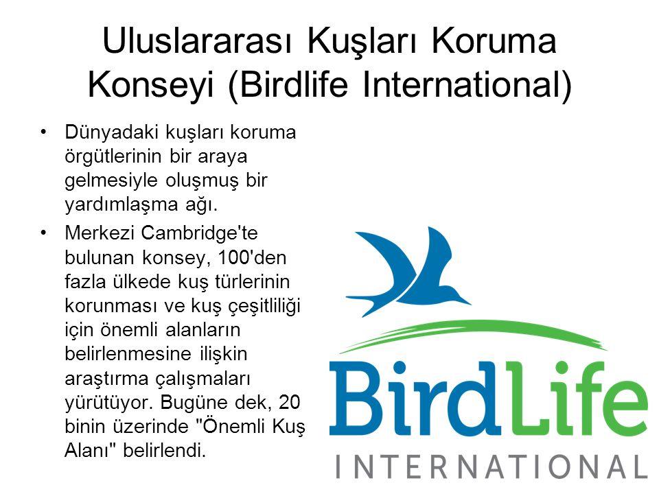 Uluslararası Kuşları Koruma Konseyi (Birdlife International) Dünyadaki kuşları koruma örgütlerinin bir araya gelmesiyle oluşmuş bir yardımlaşma ağı. M