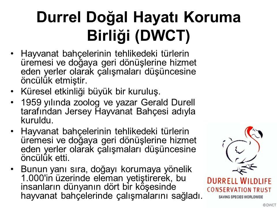Durrel Doğal Hayatı Koruma Birliği (DWCT) Hayvanat bahçelerinin tehlikedeki türlerin üremesi ve doğaya geri dönüşlerine hizmet eden yerler olarak çalı