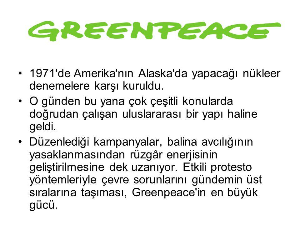 GREENPEACE 1971'de Amerika'nın Alaska'da yapacağı nükleer denemelere karşı kuruldu. O günden bu yana çok çeşitli konularda doğrudan çalışan uluslarara