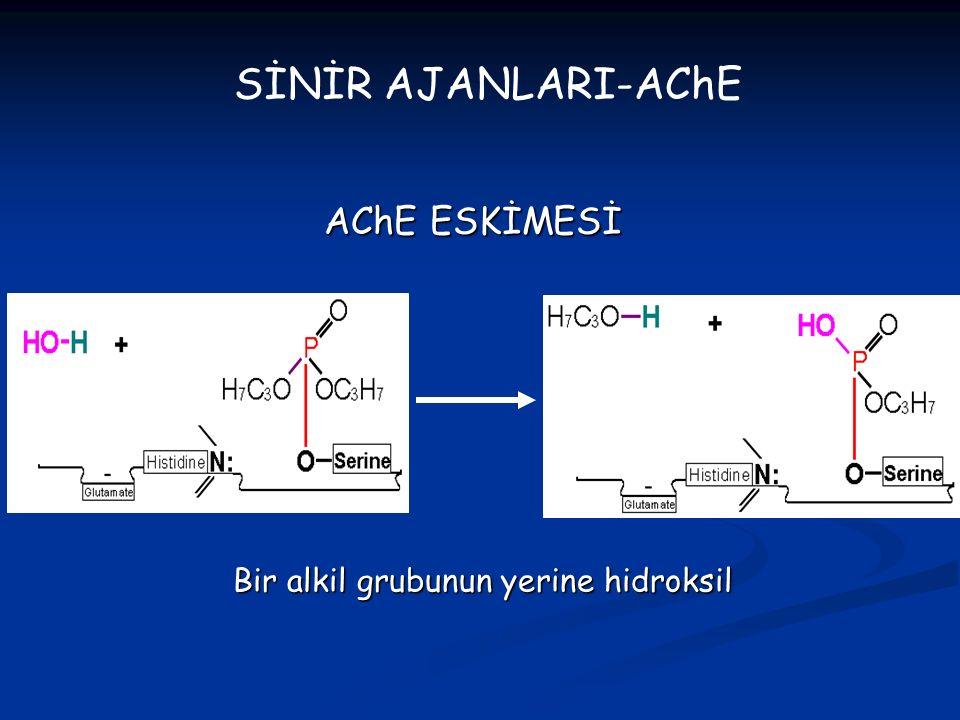 AChE ESKİMESİ SİNİR AJANLARI-AChE Bir alkil grubunun yerine hidroksil
