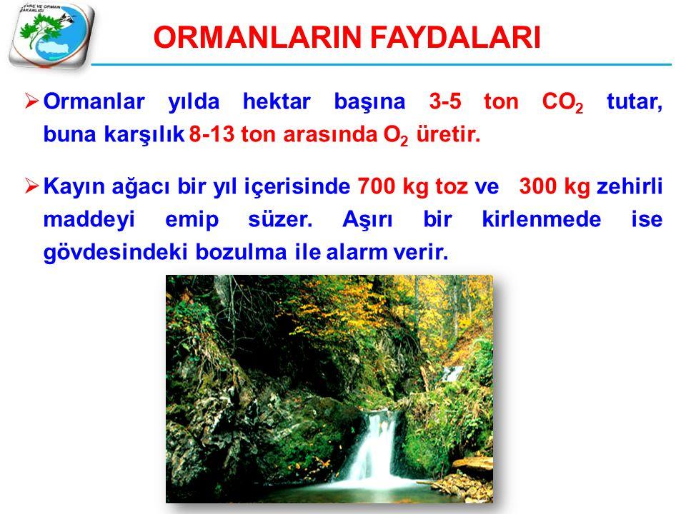  Ormanlar yılda hektar başına 3-5 ton CO 2 tutar, buna karşılık 8-13 ton arasında O 2 üretir.