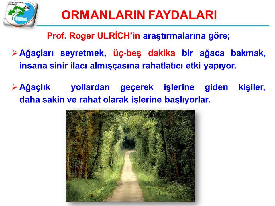 ORMANLARIN FAYDALARI Prof. Roger ULRİCH'in araştırmalarına göre;  Ağaçları seyretmek, üç-beş dakika bir ağaca bakmak, insana sinir ilacı almışçasına
