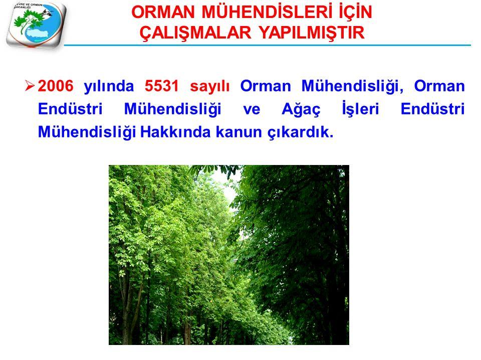 ORMAN MÜHENDİSLERİ İÇİN ÇALIŞMALAR YAPILMIŞTIR  2006 yılında 5531 sayılı Orman Mühendisliği, Orman Endüstri Mühendisliği ve Ağaç İşleri Endüstri Mühe