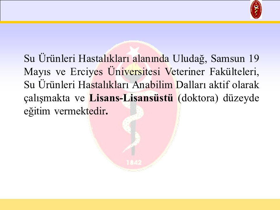 Su Ürünleri Hastalıkları alanında Uludağ, Samsun 19 Mayıs ve Erciyes Üniversitesi Veteriner Fakülteleri, Su Ürünleri Hastalıkları Anabilim Dalları aktif olarak çalışmakta ve Lisans-Lisansüstü (doktora) düzeyde eğitim vermektedir.