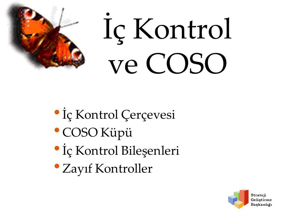 İç Kontrol ve COSO İç Kontrol Çerçevesi COSO Küpü İç Kontrol Bileşenleri Zayıf Kontroller Strateji Geliştirme Başkanlığı