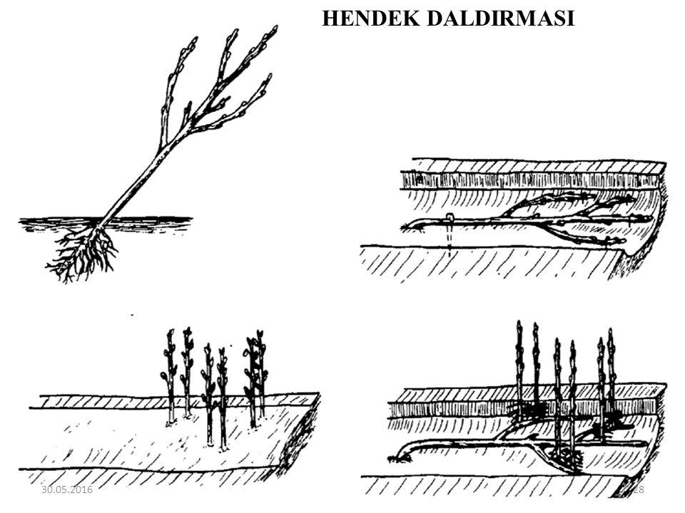 HENDEK DALDIRMASI 30.05.201628