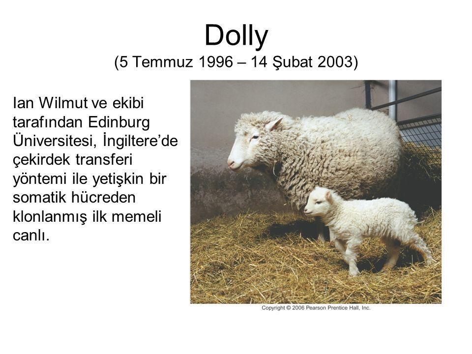 Dolly (5 Temmuz 1996 – 14 Şubat 2003) Ian Wilmut ve ekibi tarafından Edinburg Üniversitesi, İngiltere'de çekirdek transferi yöntemi ile yetişkin bir s