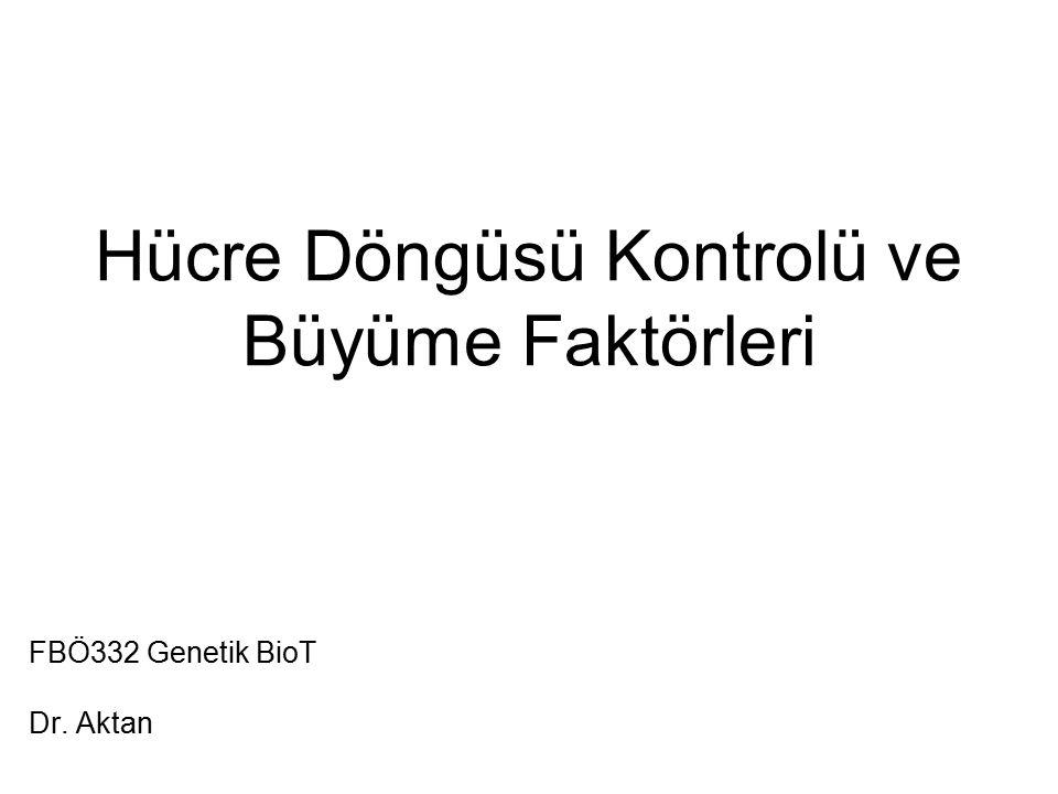 Hücre Döngüsü Kontrolü ve Büyüme Faktörleri FBÖ332 Genetik BioT Dr. Aktan