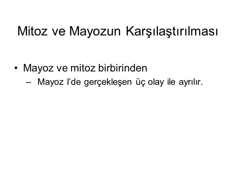 Mitoz ve Mayozun Karşılaştırılması Mayoz ve mitoz birbirinden –Mayoz I'de gerçekleşen üç olay ile ayrılır.