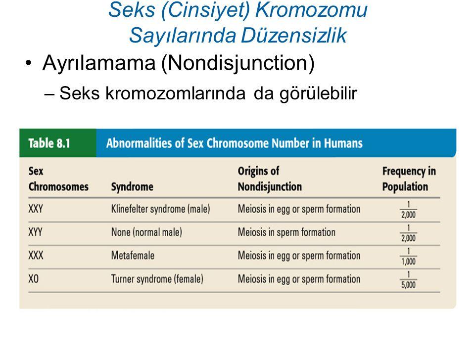 Ayrılamama (Nondisjunction) Seks (Cinsiyet) Kromozomu Sayılarında Düzensizlik –Seks kromozomlarında da görülebilir