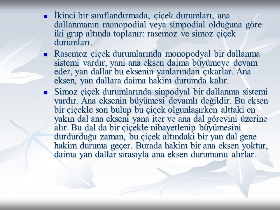 Samara: Kanatlı, açılmayan bir kuru meyvadır (Fraxinus, Ulmus, Paliurus) Samara: Kanatlı, açılmayan bir kuru meyvadır (Fraxinus, Ulmus, Paliurus) Şizokarp: Sinkarp bir ovaryumdan meydana geldiği halde, karpellerin birleşme yerinden veya bölmelerinden yarılarak, her biri bir tohumlu kısmi meyvalara ayrılan kuru meyvalardır.