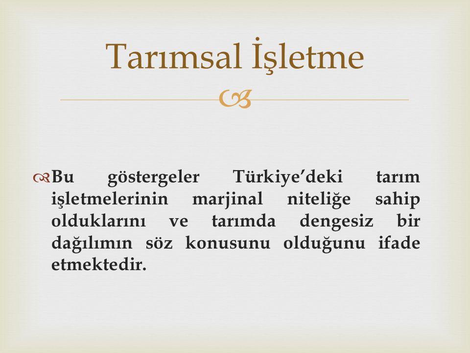   Bu göstergeler Türkiye'deki tarım işletmelerinin marjinal niteliğe sahip olduklarını ve tarımda dengesiz bir dağılımın söz konusunu olduğunu ifade etmektedir.
