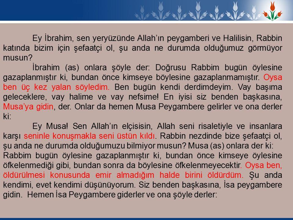 Ey İbrahim, sen yeryüzünde Allah'ın peygamberi ve Halilisin, Rabbin katında bizim için şefaatçi ol, şu anda ne durumda olduğumuz görmüyor musun.