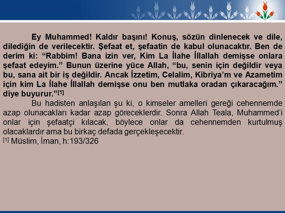 Ey Muhammed. Kaldır başını. Konuş, sözün dinlenecek ve dile, dilediğin de verilecektir.