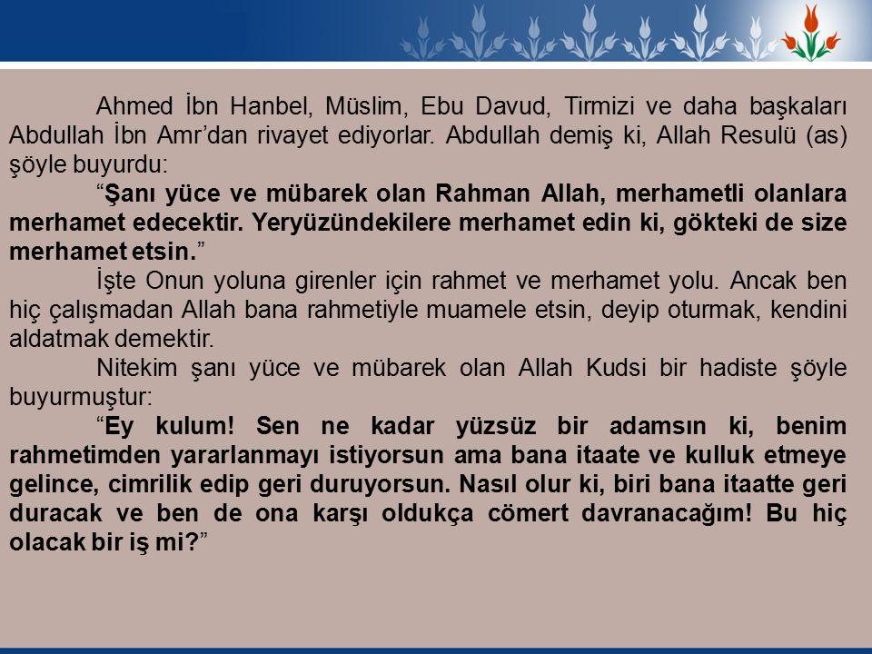 Ahmed İbn Hanbel, Müslim, Ebu Davud, Tirmizi ve daha başkaları Abdullah İbn Amr'dan rivayet ediyorlar.