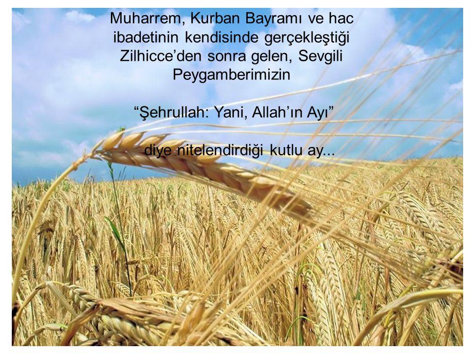 Muharrem, Kurban Bayramı ve hac ibadetinin kendisinde gerçekleştiği Zilhicce'den sonra gelen, Sevgili Peygamberimizin Şehrullah: Yani, Allah'ın Ayı diye nitelendirdiği kutlu ay...