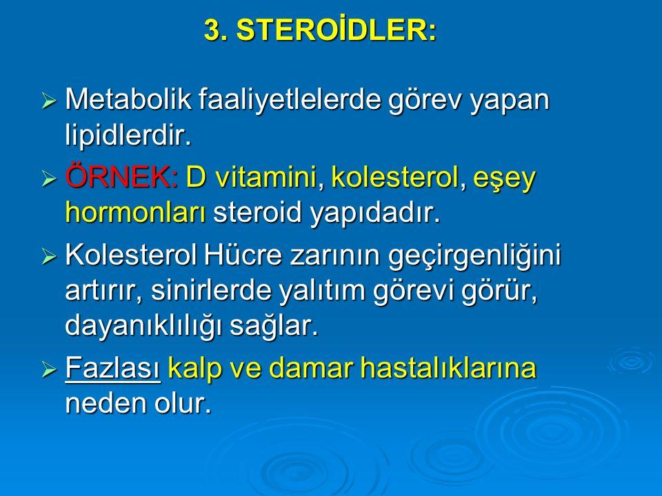 3. STEROİDLER:  Metabolik faaliyetlelerde görev yapan lipidlerdir.  ÖRNEK: D vitamini, kolesterol, eşey hormonları steroid yapıdadır.  Kolesterol H