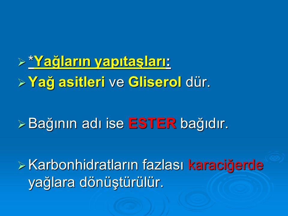  *Yağların yapıtaşları:  Yağ asitleri ve Gliserol dür.  Bağının adı ise ESTER bağıdır.  Karbonhidratların fazlası karaciğerde yağlara dönüştürülür