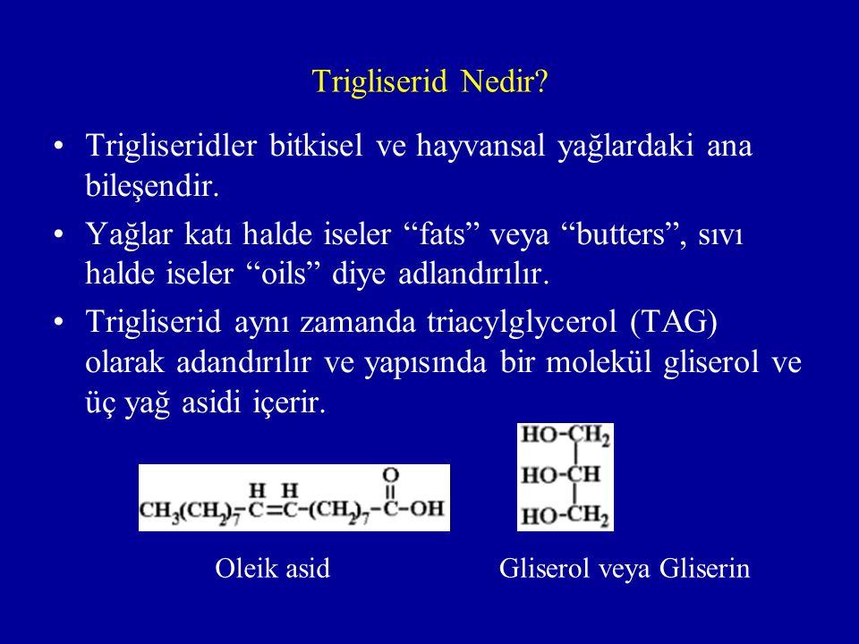 Trigliserid Nedir.Trigliseridler bitkisel ve hayvansal yağlardaki ana bileşendir.