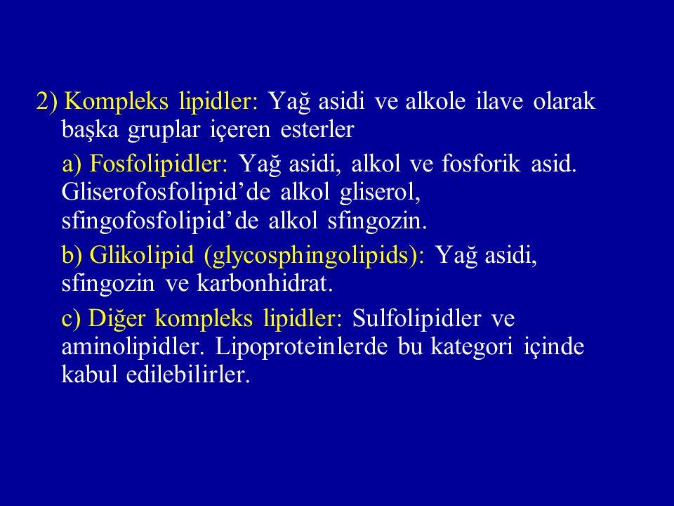 2) Kompleks lipidler: Yağ asidi ve alkole ilave olarak başka gruplar içeren esterler a) Fosfolipidler: Yağ asidi, alkol ve fosforik asid.