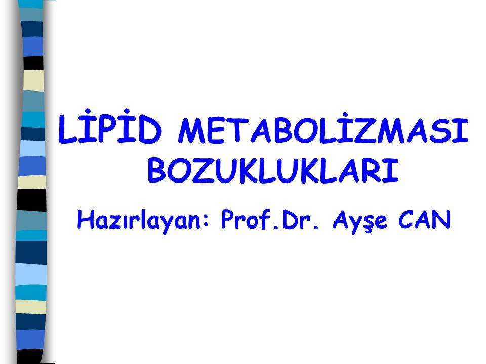 Başlıca serum lipidleri Adıİşlevi KolesterolHücre membranının bileşeni, steroid hormonların, D vitamininin ve safra asidlerinin ön maddesi TrigliseridlerEnerjinin depolanma ve taşınması, ısı yalıtımı FosfolipidlerHücre membranlarının ve lipoproteinlerin bileşeni Yağ asidleriEnerji metabolizması, prostanoidlerin öncül maddeleri, trigliserid ve fosfolipidlerin bileşeni