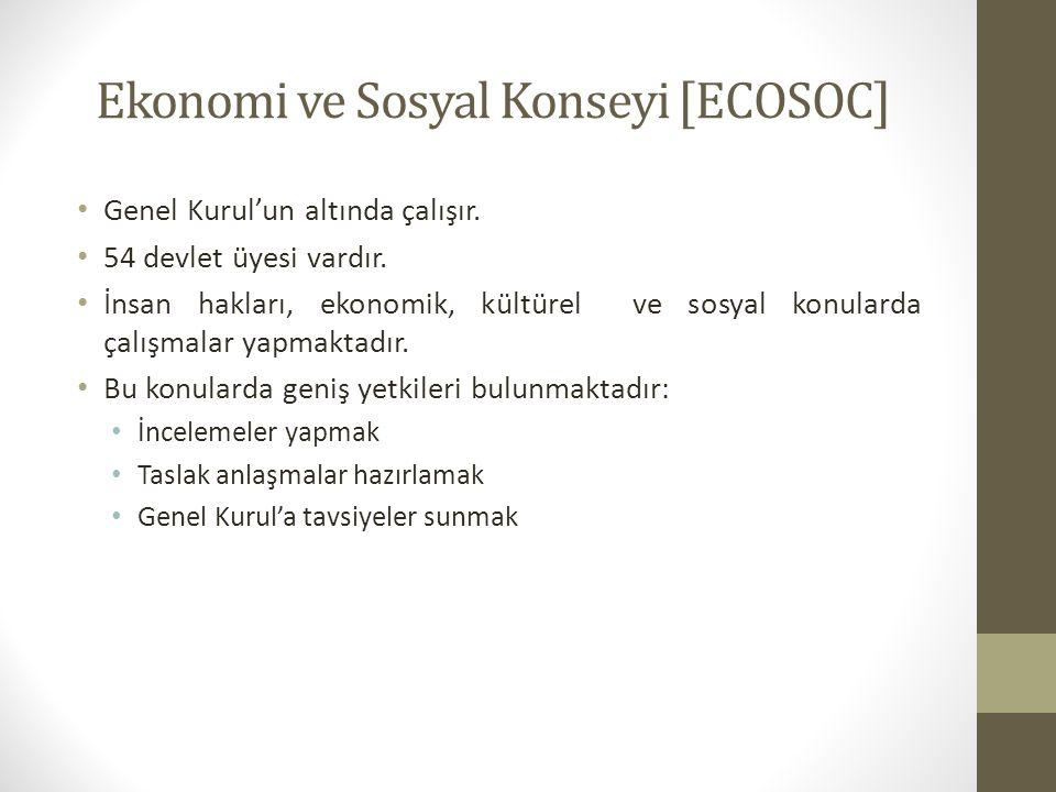 Ekonomi ve Sosyal Konseyi [ECOSOC] Genel Kurul'un altında çalışır. 54 devlet üyesi vardır. İnsan hakları, ekonomik, kültürel ve sosyal konularda çalış