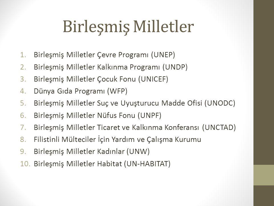 Birleşmiş Milletler 1.Birleşmiş Milletler Çevre Programı (UNEP) 2.Birleşmiş Milletler Kalkınma Programı (UNDP) 3.Birleşmiş Milletler Çocuk Fonu (UNICE