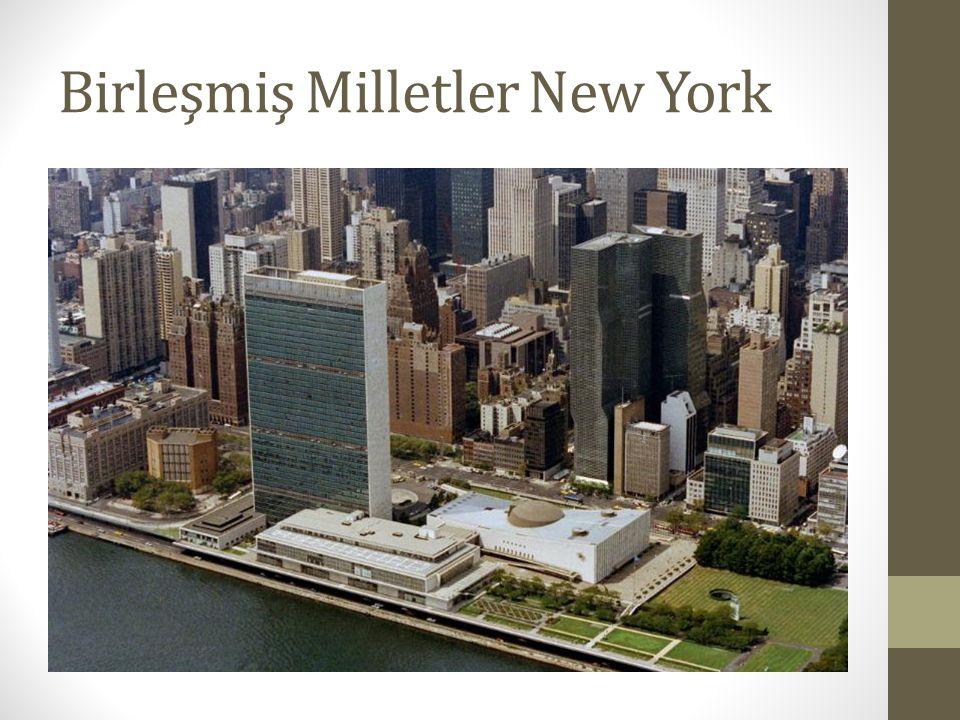 Birleşmiş Milletler New York