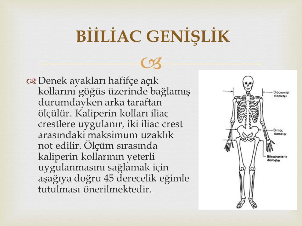   Denek ayakları hafifçe açık kollarını göğüs üzerinde bağlamış durumdayken arka taraftan ölçülür.