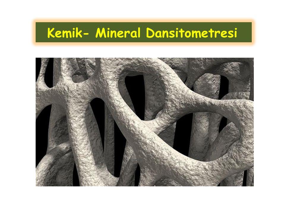 Kemik mineral dansitometre cihazları, X-ışınları, γ- ışınları ya da ultra sesin kemiği geçerken bir kısmının kemik tarafından absorbe edilmesi ve kalan radyasyon miktarının hassas olarak ölçülmesi prensibine göre çalışır.