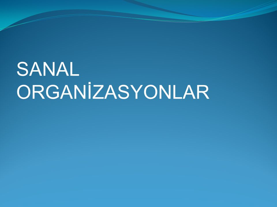 SANAL ORGANİZASYONLAR
