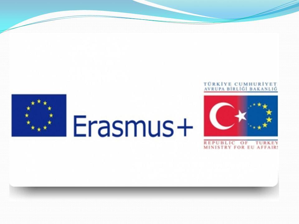 GÖREVLERİ Temel olarak Avrupa Birliği'nin eğitim ve gençlik programlarını ülke içinde duyurma, bu programlara katılım çalışmalarını koordine etme, yürütme ve izleme, Avrupa Komisyonuna rapor halinde sunma, program uygulamaları hakkında Avrupa Komisyonu ile gerekli görüşmeleri yapma ve uygulama sözleşmelerini imzalama görevlerini üstlenmiştir.