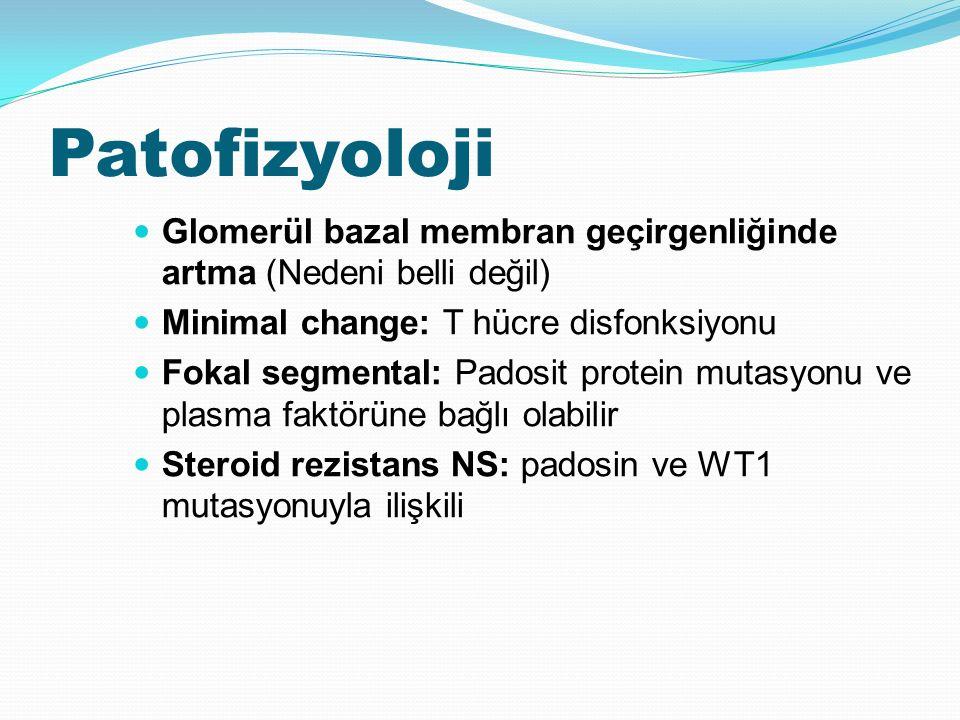 Patofizyoloji Glomerül bazal membran geçirgenliğinde artma (Nedeni belli değil) Minimal change: T hücre disfonksiyonu Fokal segmental: Padosit protein mutasyonu ve plasma faktörüne bağlı olabilir Steroid rezistans NS: padosin ve WT1 mutasyonuyla ilişkili