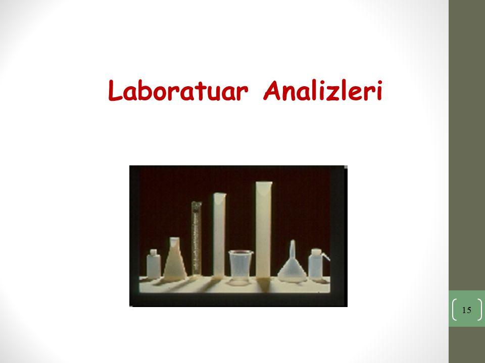Laboratuar Analizleri 15