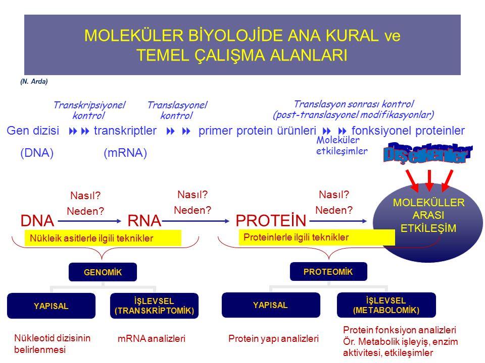 MOLEKÜLER BİYOLOJİDE ANA KURAL ve TEMEL ÇALIŞMA ALANLARI DNA RNA PROTEİN MOLEKÜLLER ARASI ETKİLEŞİM Nasıl? Neden? Nasıl? Neden? Nasıl? Neden? Gen dizi