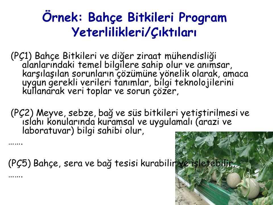 Örnek: Bahçe Bitkileri Program Yeterlilikleri/Çıktıları (PÇ1) Bahçe Bitkileri ve diğer ziraat mühendisliği alanlarındaki temel bilgilere sahip olur ve anımsar, karşılaşılan sorunların çözümüne yönelik olarak, amaca uygun gerekli verileri tanımlar, bilgi teknolojilerini kullanarak veri toplar ve sorun çözer, (PÇ2) Meyve, sebze, bağ ve süs bitkileri yetiştirilmesi ve ıslahı konularında kuramsal ve uygulamalı (arazi ve laboratuvar) bilgi sahibi olur, …….