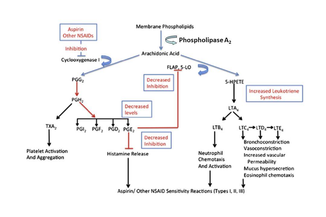 NSAİİ: TERS İLAÇ REAKSİYONLARI TİP A TİP B Sık, öngörülebilir, normal kişiler Karın ağrısı (%10-20)(gastrit) Renal toksisite Kanama (deri, GİS, GÜS) Aşırı duyarlılık Öngörülemez Duyarlı kişiler AlerjikNon-alerjik İmmünolojik mekanizmalar IgE-aracılı Hücresel Non-immünolojik mekanizmalar COX-1 inhibisyonu Bir ilaç normal bireyler tarafından tolere edilen dozlarında objektif olarak yinelenebilir belirti ve bulgular oluşturuyorsa bu durum İlaç aşırı duyarlığı olarak tanımlanır (EAACI/WAO)