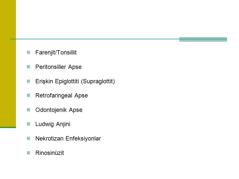 Farenjit/Tonsillit Peritonsiller Apse Erişkin Epiglottiti (Supraglottit) Retrofaringeal Apse Odontojenik Apse Ludwig Anjini Nekrotizan Enfeksiyonlar Rinosinüzit